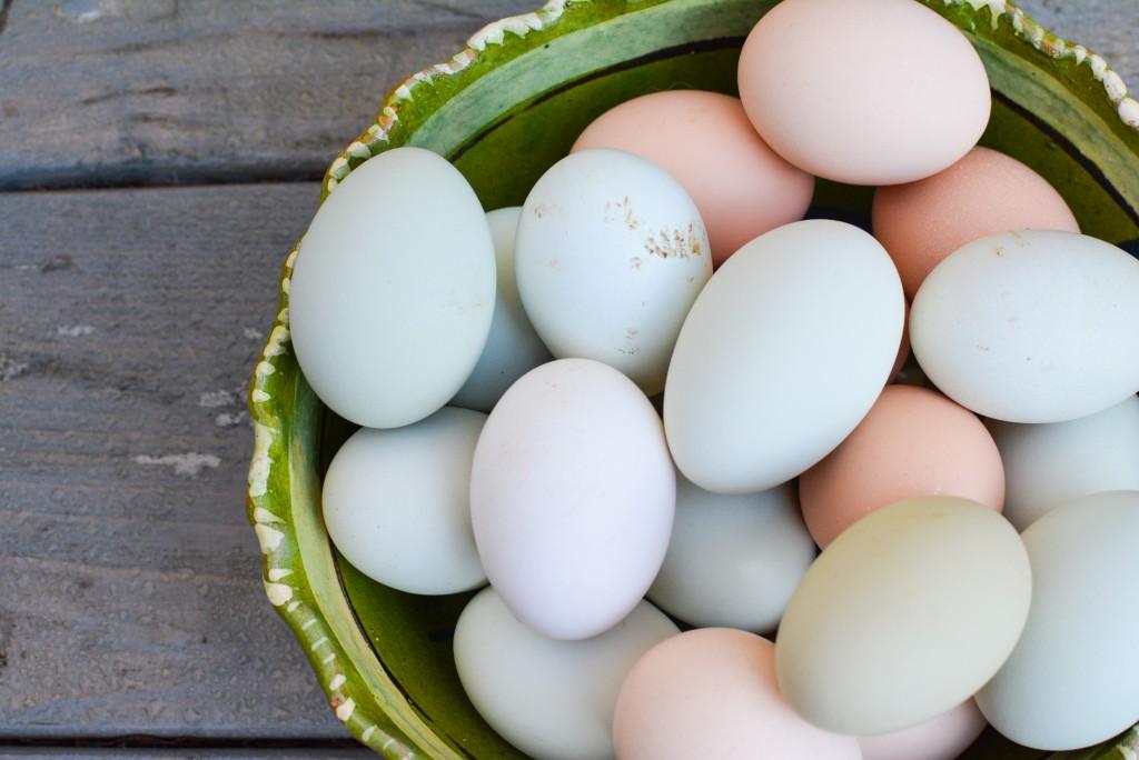 How to hard boil eggs   kristinschell.com