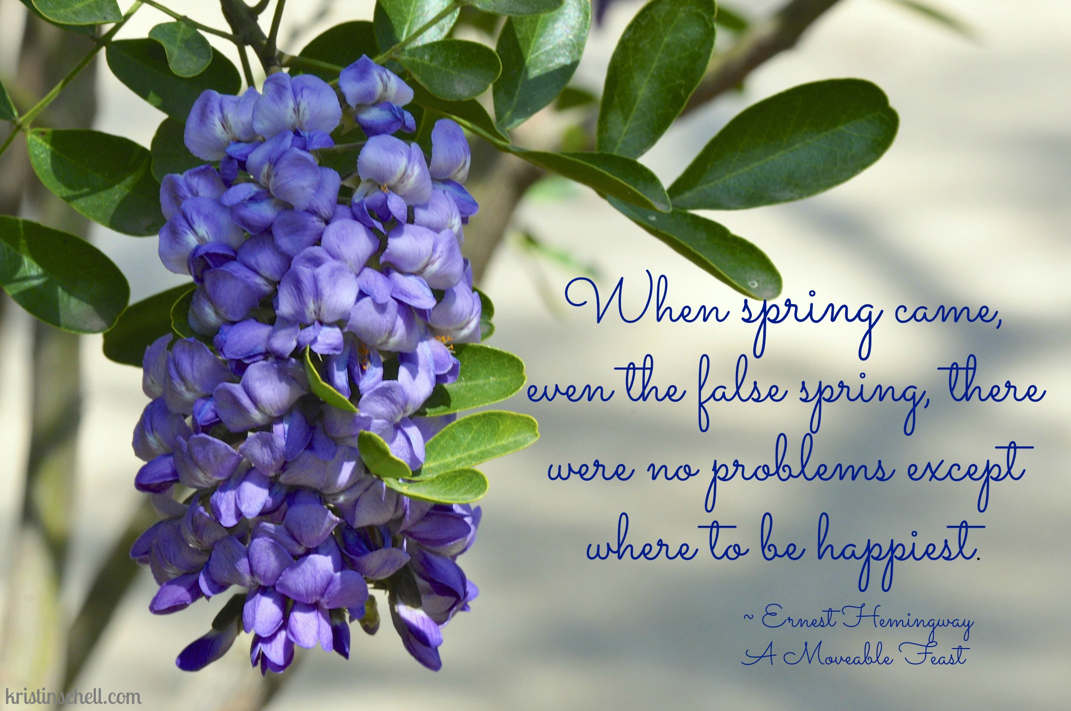 Spring Cleaning Quotes. QuotesGram