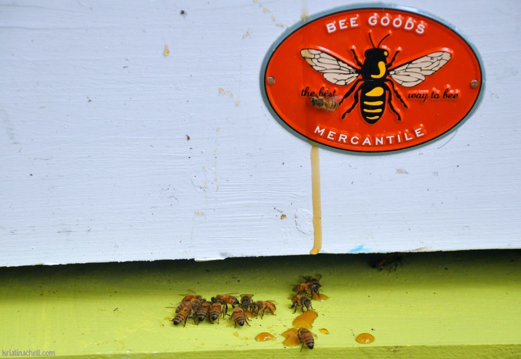 Bee Good Mercantile WM