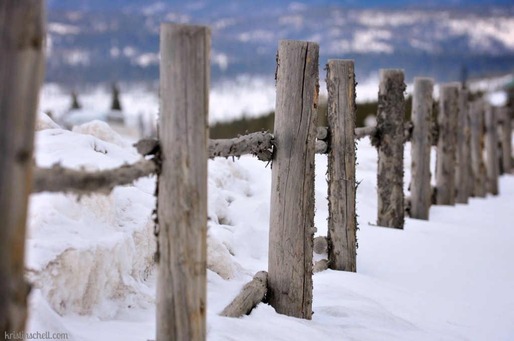Don't Fence Me In {Snow Mountain Ranch, YMCA} WM