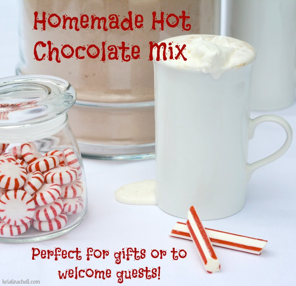 Homemade Hot Chocolate Mix | kristinschell.com