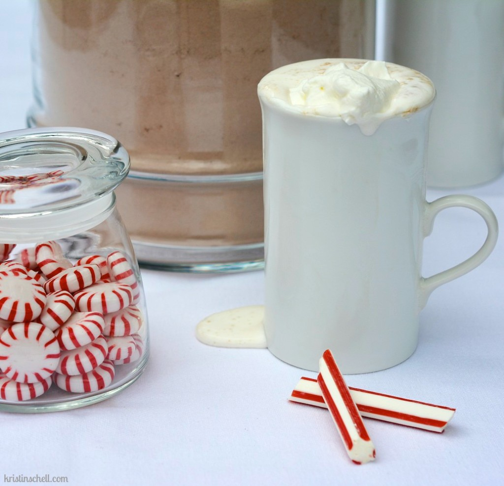 Hot Chocolate Mix for a Crowd | kristinschell.com